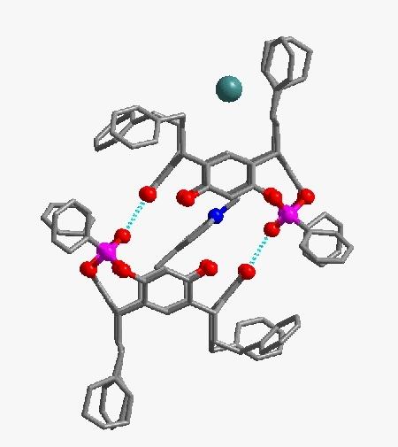 Structure complète d'une molécule de type résorcinol complexant un picolinium