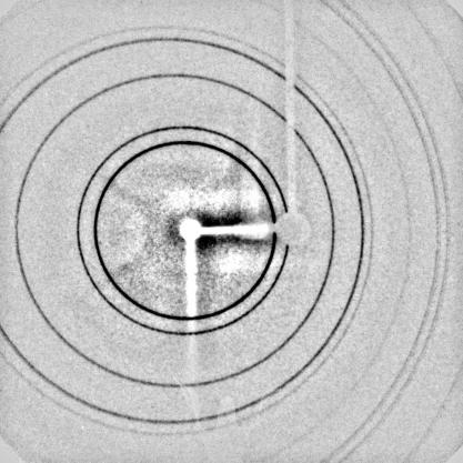Image obtenue lors d'une exposition d'une poudre cristalline à un faisceau de rayonsX