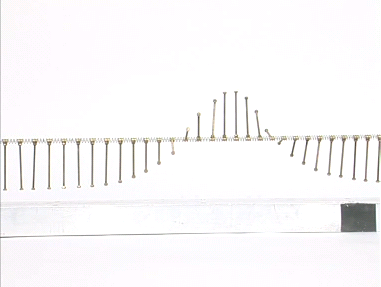 La chaîne de pendules lors du passage d'un soliton
