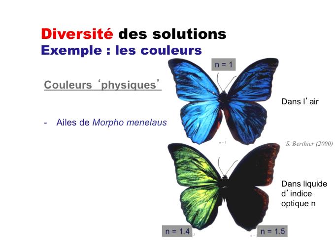 couleurs-physiques.jpg