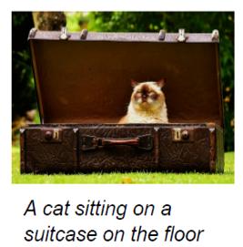 """Description sémantique du contenu d'une image: """"il y a un chat assis dans une valise posée par terre"""""""