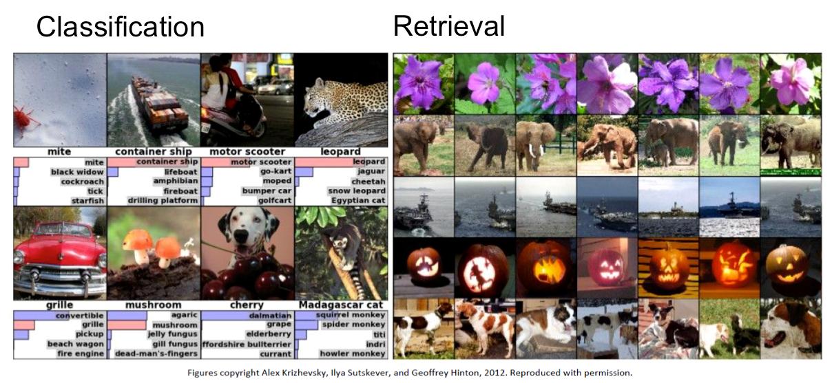 Exemples de classifications et d'associations de contenu d'images