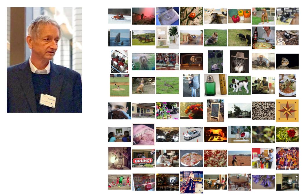 Geoffrey Hinton (à gauche) et quelques exemples d'images tirées de la base de donnée ImageNet (à droite)